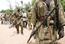 Govt to enlist hunters in fight against Boko Haram - Daily Post ...