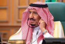 Climate Change: Saudi Arabia to plant 50bn trees - Embassy