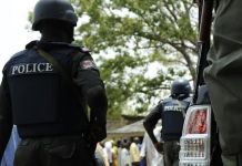 104 suspects, man who defiled his 7-month old daughter paraded by Benue Police