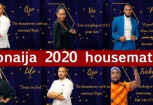 BBNaija 2020: Profiles of the 20 housemates to compete for N85 millionBBNaija 2020: Meet the 20 housemates to compete for N85 million
