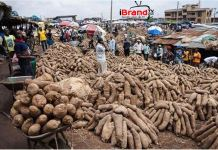 Yam Business: Leveraging from Nigeria's underground economy