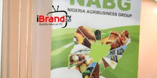 Agencies need to synergize on regulating agric commodities - Ijewere