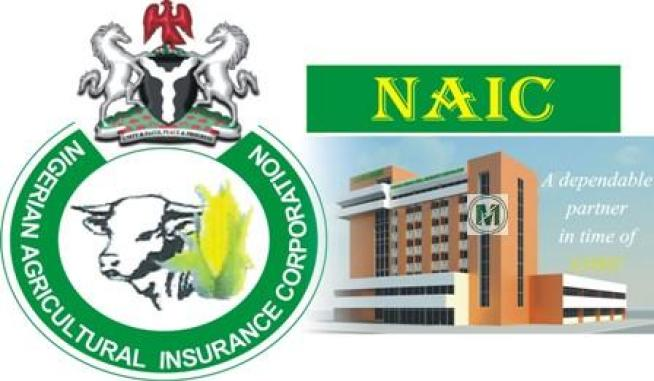 NAIC assures AFAN on farmers' insurance against flood crisis
