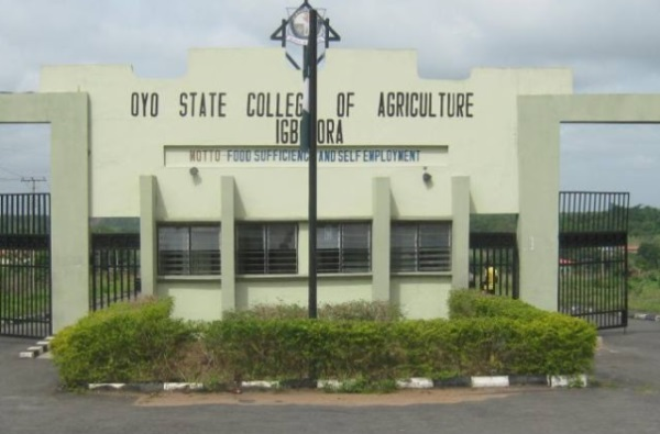 Oyo agriculture college pledges commitment to institution's growth