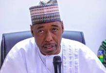 Borno State Governor