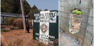 Video: Abducted Kaduna Students Beg FG To Intervene