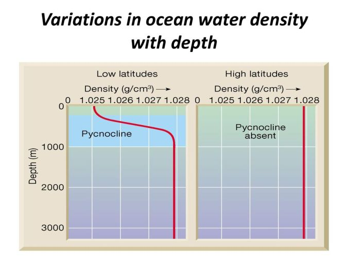 Variations in ocean water density with depth