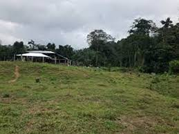 1817.374 SQUARE METRES LAND FOR SALE AT VICTORIA ISLAND, LAGOS