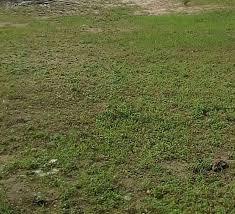 RESIDENTIAL LAND PROPERTY OF 648 SQUARE METRES FOR SALE AT LEKKI, LAGOS