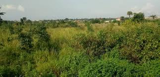 600 SQUARE METRES LAND FOR SALE AT LEKKI-EPE EXPRESSWAY LEKKI, LAGOS