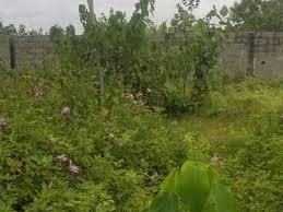 500 SQUARE METRES LAND FOR SALE IN IKOYI, LAGOS