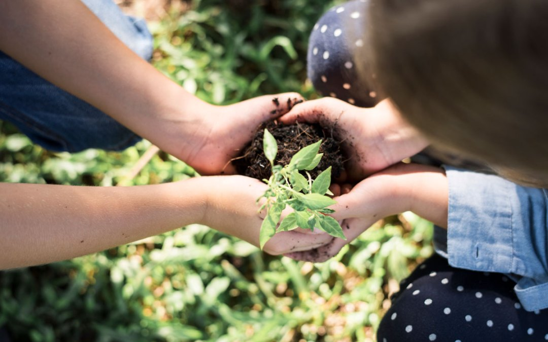 Mindful Adults, Mindful Kids: Planting Seeds in the Garden of Well-Being