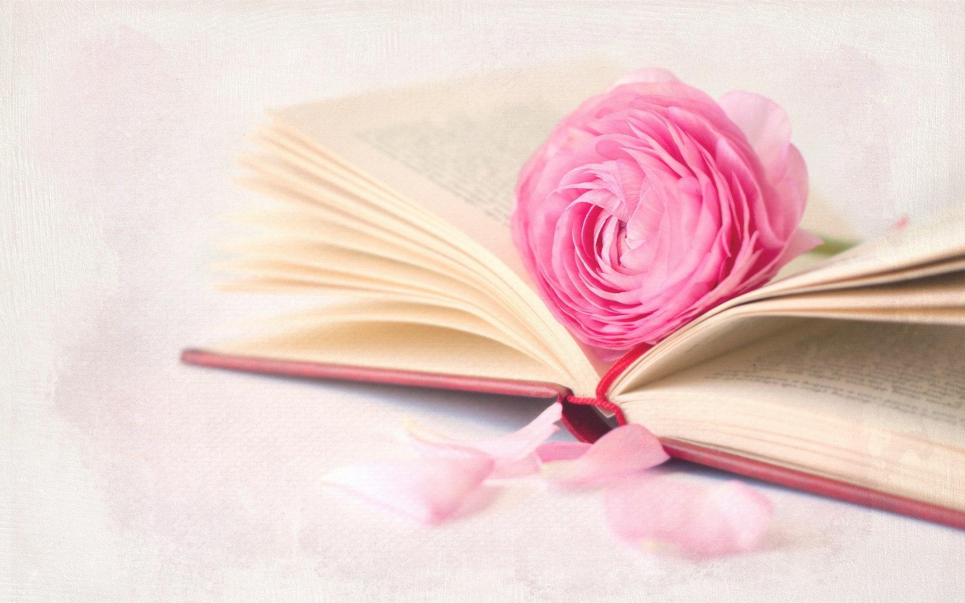 картинки для обложки книги цветы поймете