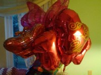 Barbara Custer loves her Mylar balloons and zombie fiction.