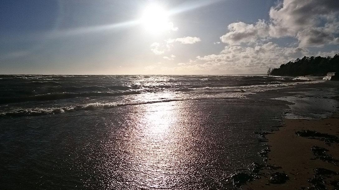 1395758 original Залив возомнил себя морем и разбушевался 21