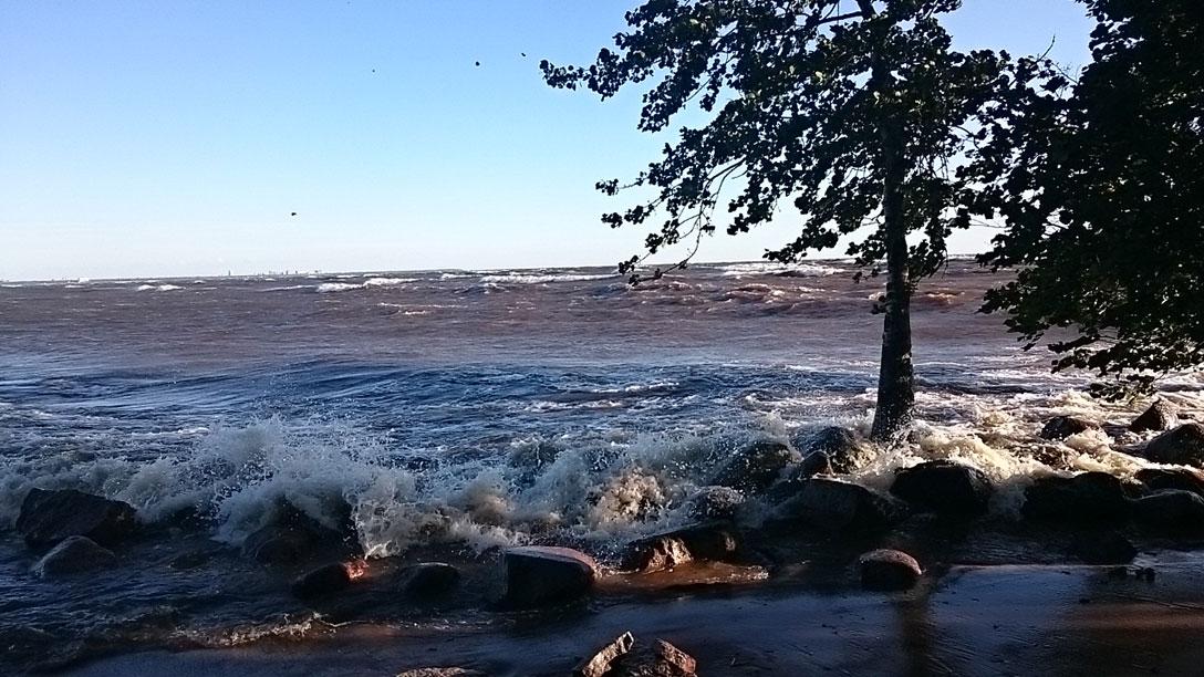 1396660 original Залив возомнил себя морем и разбушевался 16