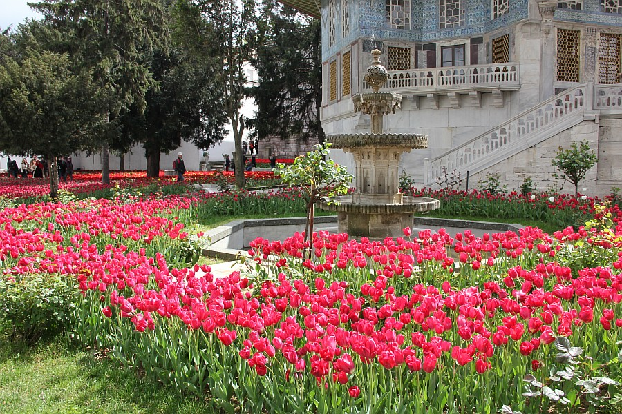 Дворец, Топкапы, Стамбул, путешествия, фотография, Аксанов Нияз, kukmor, природа, of IMG_3462