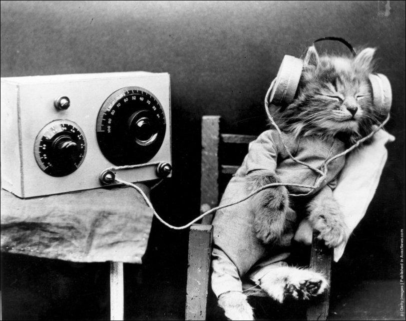 retro-cats-002