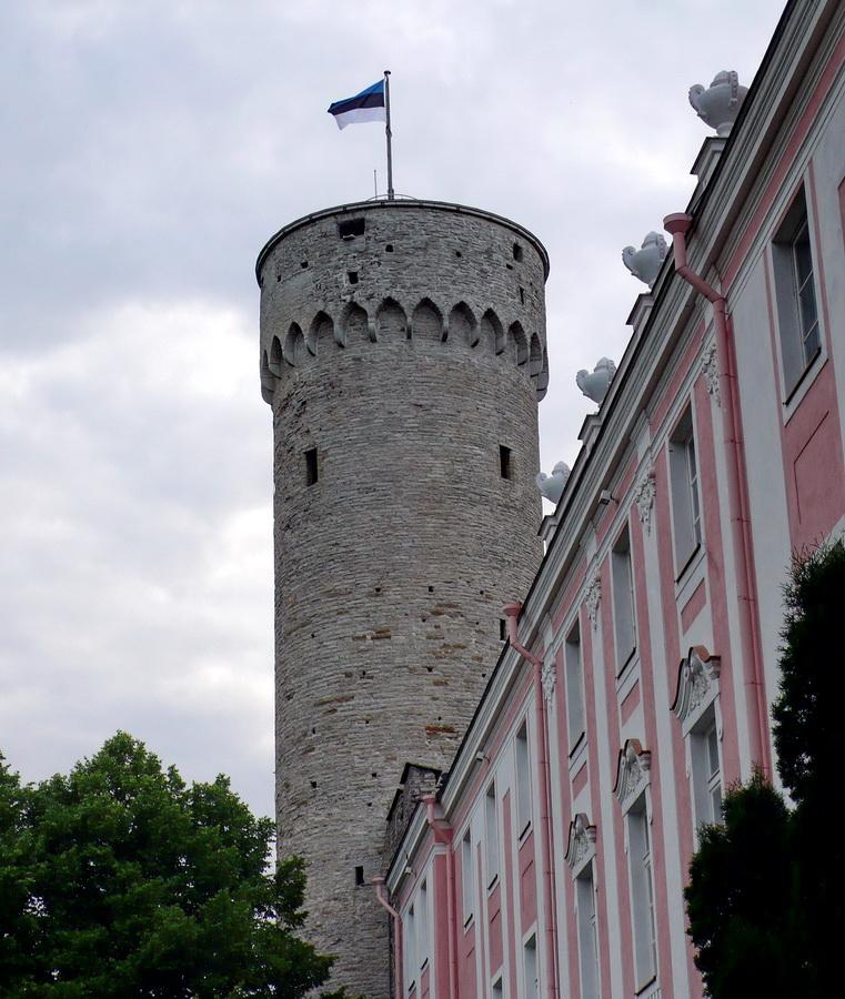 Femeile estonene