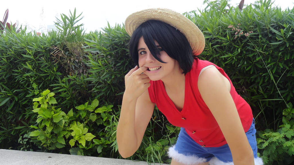 One Piece Monkey.D.Luffy cosplay