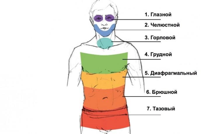 Причины формирования мышечного панциря и как его устранить