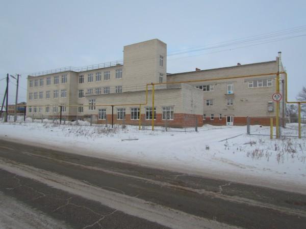 Николай Меркушкин оказался недоволен школой в Шигонском районе?