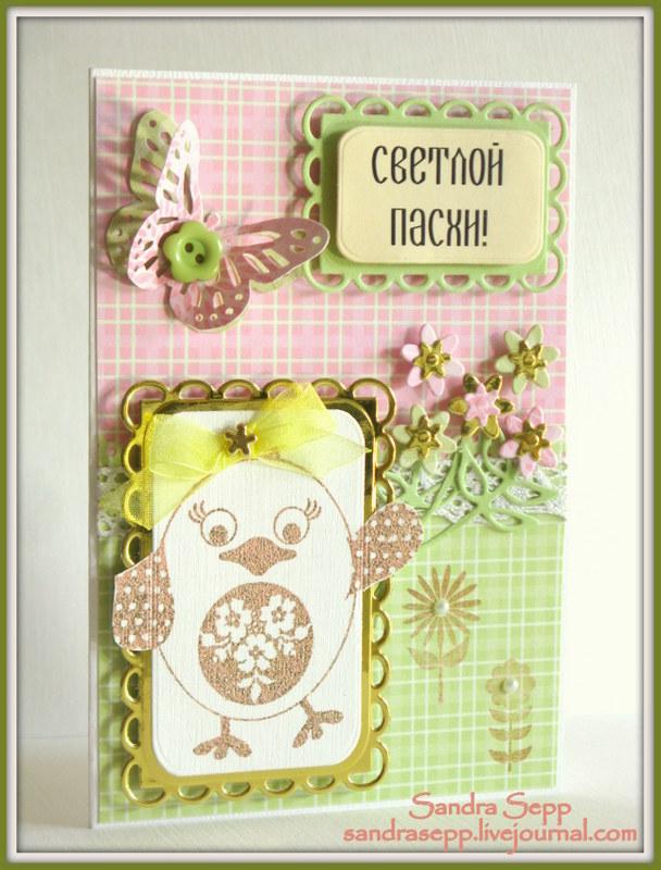 PASXA CARD 002