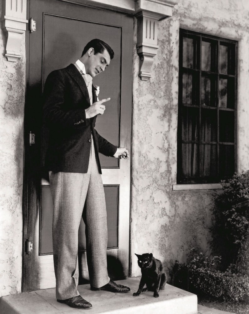 cary grant cat 00a