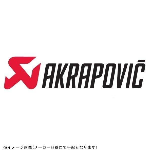 100%の保証 [L-T595S1] AKRAPOVIC(アクラポビッチ) (受注発注品) リンクパイプ