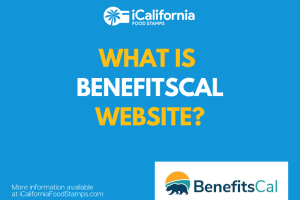 """""""What is the Benefitscal website about"""""""