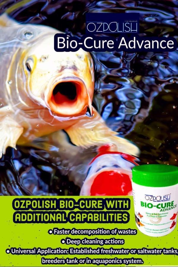 OZPOLISH Bio-Cure Advance