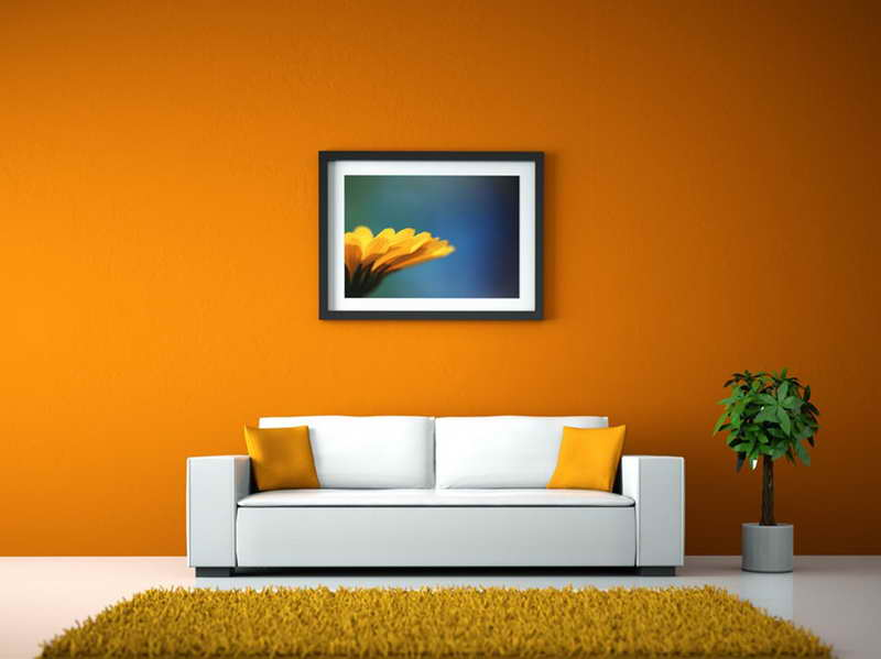 Colors for Walls in Living Room  Decor IdeasDecor Ideas
