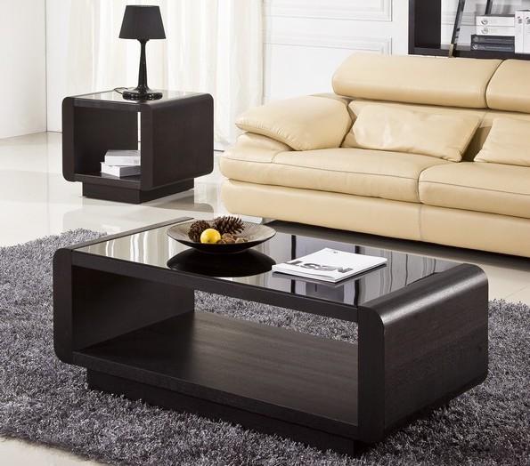 Living Room Center Table  Decor IdeasDecor Ideas