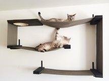 Wall Mounted Cat Shelves - Decor Ideasdecor Ideas