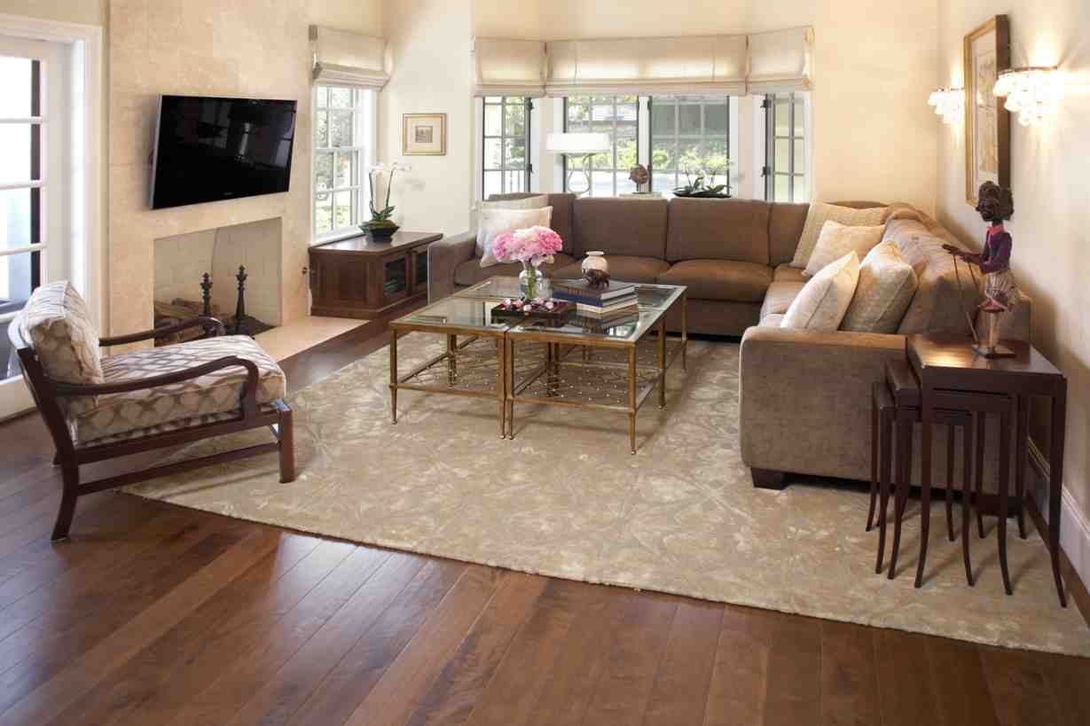 Living Room Throw Rugs  Decor IdeasDecor Ideas