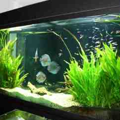 Lowes Kitchen Aid Pro Style Faucet Freshwater Aquarium Decorations - Decor Ideasdecor Ideas