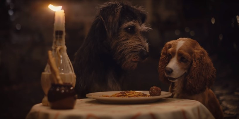 Justin Theroux (Tramp) and Tessa Thompson (Lady) star in the title roles of the Disney+ live action remake of LADY AND THE TRAMP (2019)