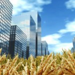 Better Finance, Better Food: Investors Urged to Help Transform the Food System