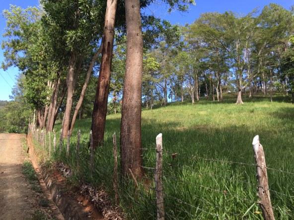 Amplio Terreno Con Vivienda Incluida En Jarab