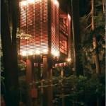 Moderna casa de madera entre los árboles
