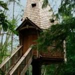 Casota de Treehouseworkshop.com