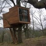 pequeña casa de madera en el árbol