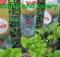 jardin con botellas de plático