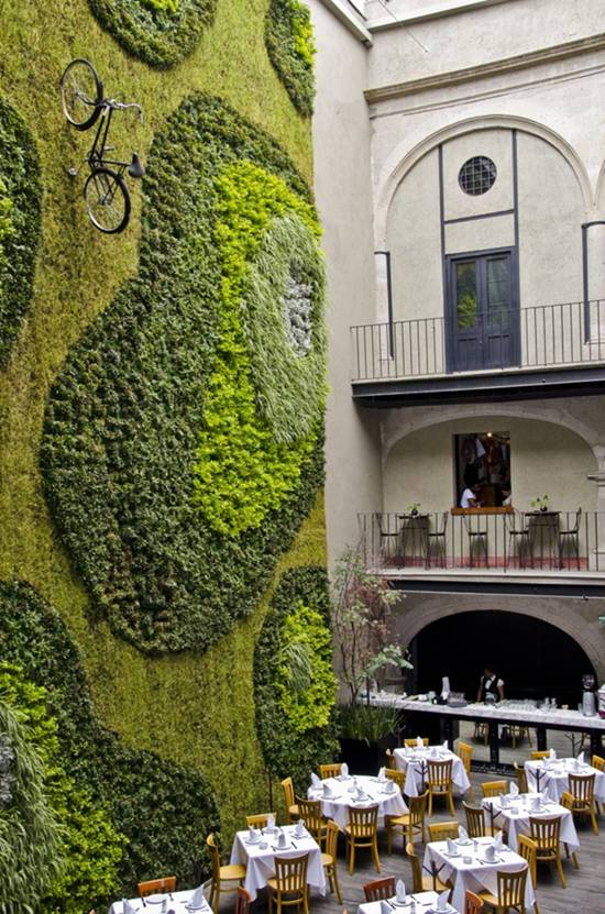 jardines verticales fabulosos: restauran padrinos en Ciudad de Mexico