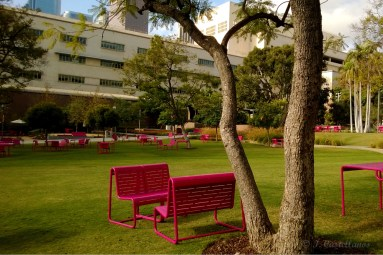 Grand Park - Benches