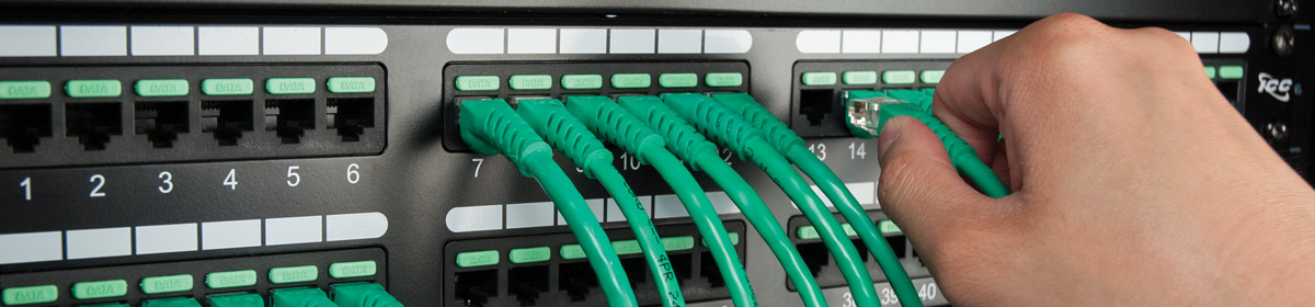 48-Port Green Patch Panel