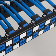 CAT6A Keystone connectors on patch panel
