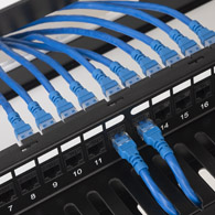 CAT6A keystone couplers on blank patch panel with hinged bracket