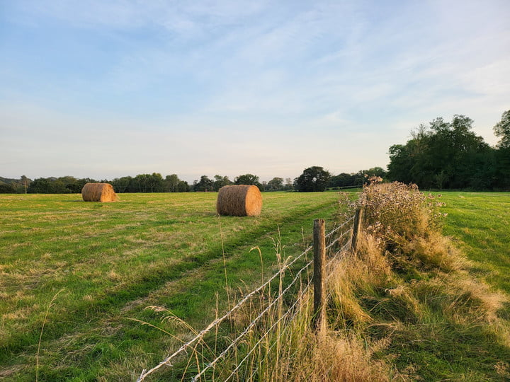 Photo of a hay bales taken with the Galaxy Z Fold 3.