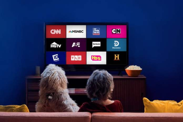 A woman and a dog watching a channel on Sling TV.